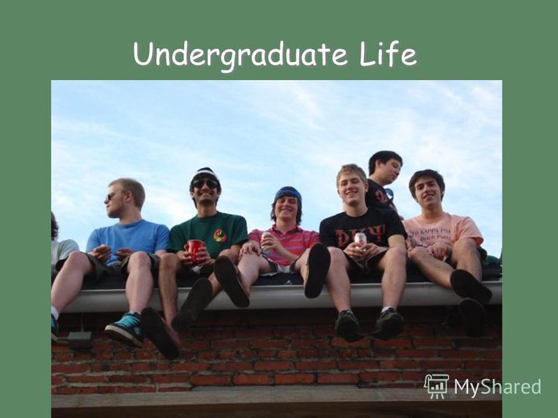 Undergraduate Life