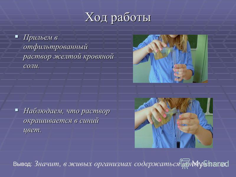 Ход работы Прильем в отфильтрованный раствор желтой кровяной соли. Прильем в отфильтрованный раствор желтой кровяной соли. Наблюдаем, что раствор окрашивается в синий цвет. Наблюдаем, что раствор окрашивается в синий цвет. Вывод: Значит, в живых орга