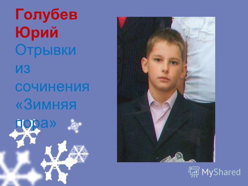 Голубев Юрий Отрывки из сочинения «Зимняя пора»