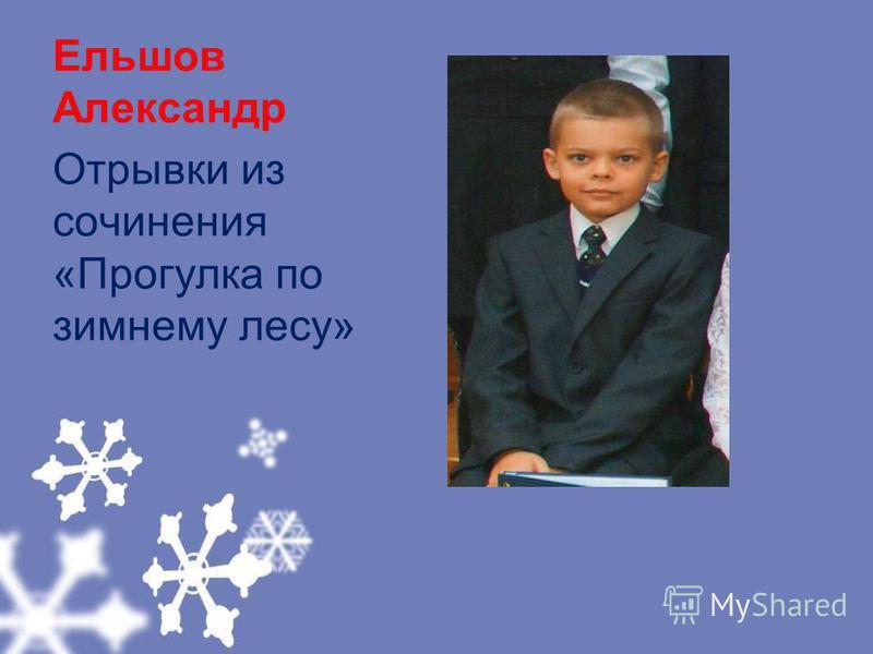 Ельшов Александр Отрывки из сочинения «Прогулка по зимнему лесу»