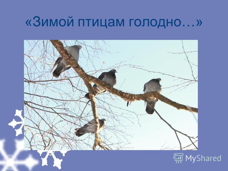 «Зимой птицам голодно…»