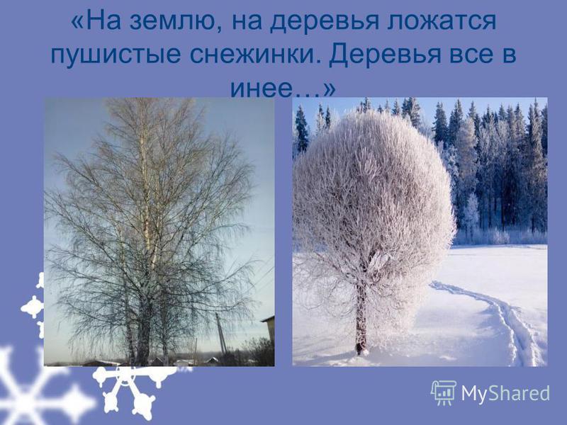 «На землю, на деревья ложатся пушистые снежинки. Деревья все в инее…»