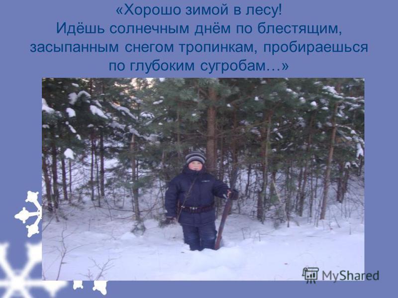 «Хорошо зимой в лесу! Идёшь солнечным днём по блестящим, засыпанным снегом тропинкам, пробираешься по глубоким сугробам…»