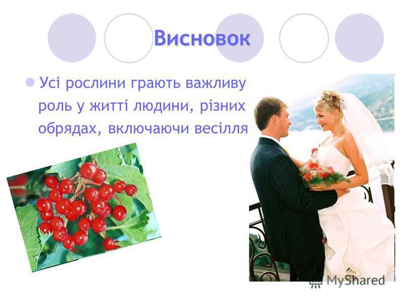 Висновок Усі рослини грають важливу роль у житті людини, різних обрядах, включаючи весілля.