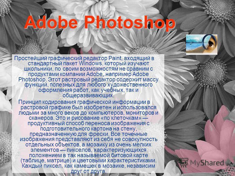 Adobe Photoshop Простейший графический редактор Paint, входящий в стандартный пакет Windows, который изучают школьники, по своим возможностям не сравним с продуктами компании Adobe, например Adobe Photoshop. Этот растровый редактор содержит массу фун