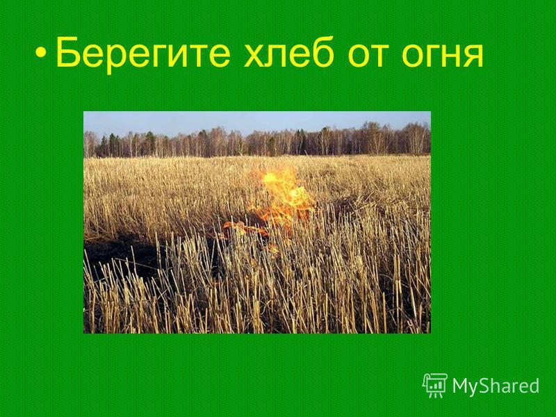 Берегите хлеб от огня
