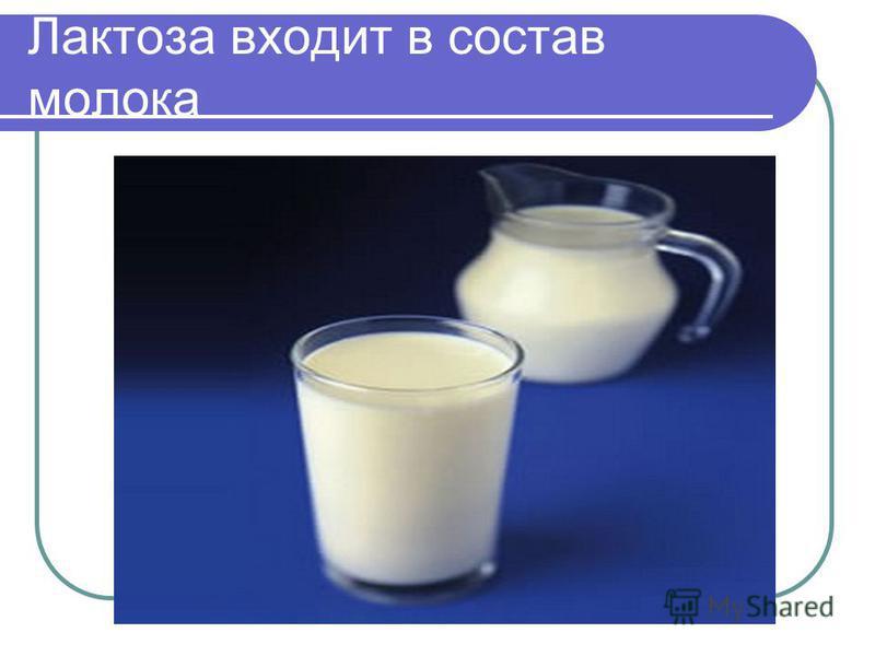 Лактоза входит в состав молока