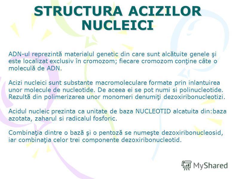 STRUCTURA ACIZILOR NUCLEICI ADN-ul reprezintă materialul genetic din care sunt alcătuite genele şi este localizat exclusiv în cromozom; fiecare cromozom conţine câte o moleculă de ADN. Acizi nucleici sunt substante macromoleculare formate prin inlant