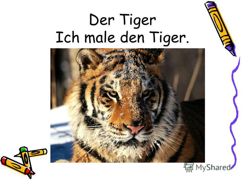 Der Tiger Ich male den Tiger.