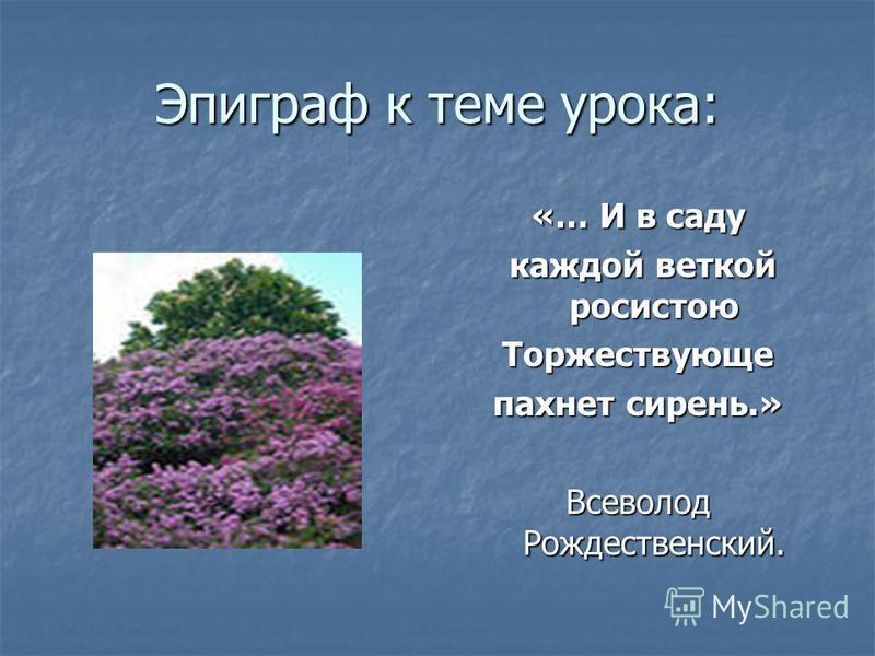 Эпиграф к теме урока: «… И в саду каждой веткой росистою Торжествующе пахнет сирень.» Всеволод Рождественский.