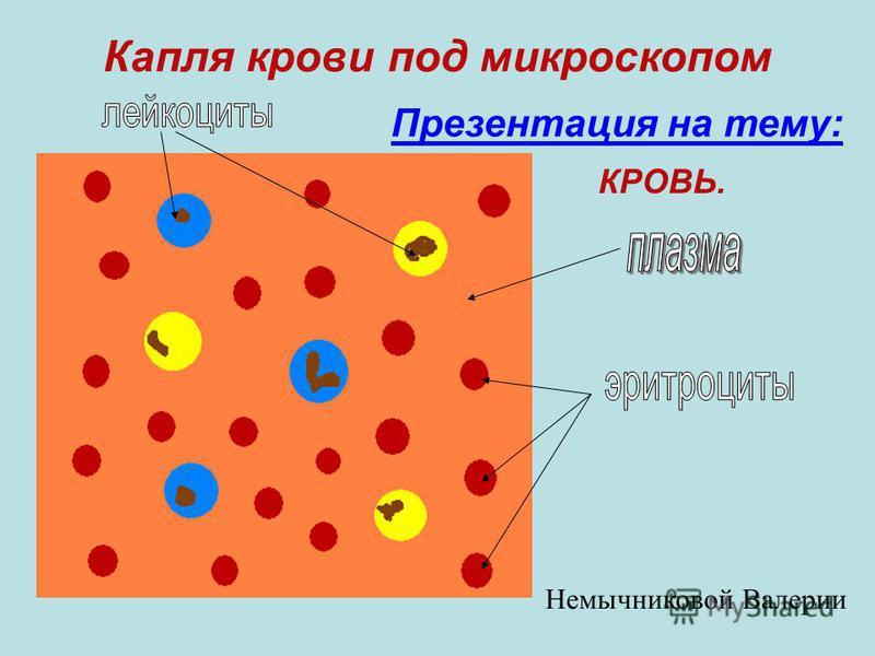 Капля крови под микроскопом Презентация на тему: КРОВЬ. Немычниковой Валерии
