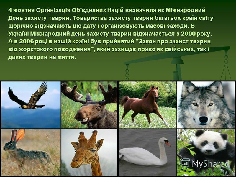 4 жовтня Організація Об ' єднаних Націй визначила як Міжнародний День захисту тварин. Товариства захисту тварин багатьох країн світу щорічно відзначають цю дату і організовують масові заходи. В Україні Міжнародний день захисту тварин відзначається з