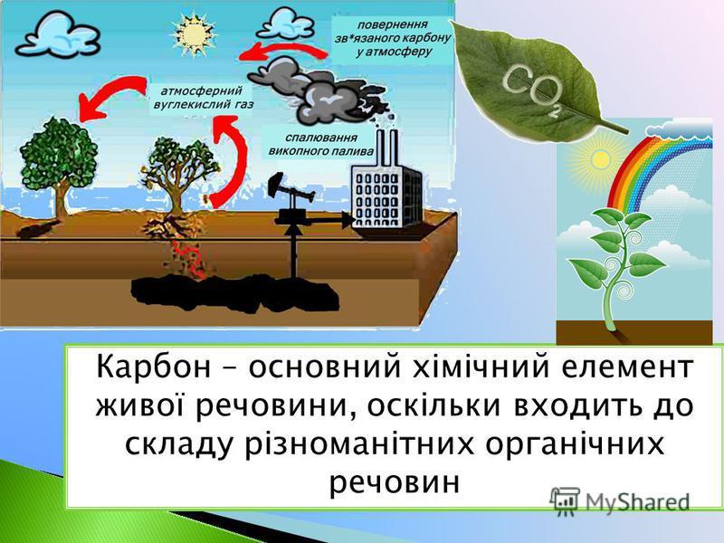 Карбон – основний хімічний елемент живої речовини, оскільки входить до складу різноманітних органічних речовин