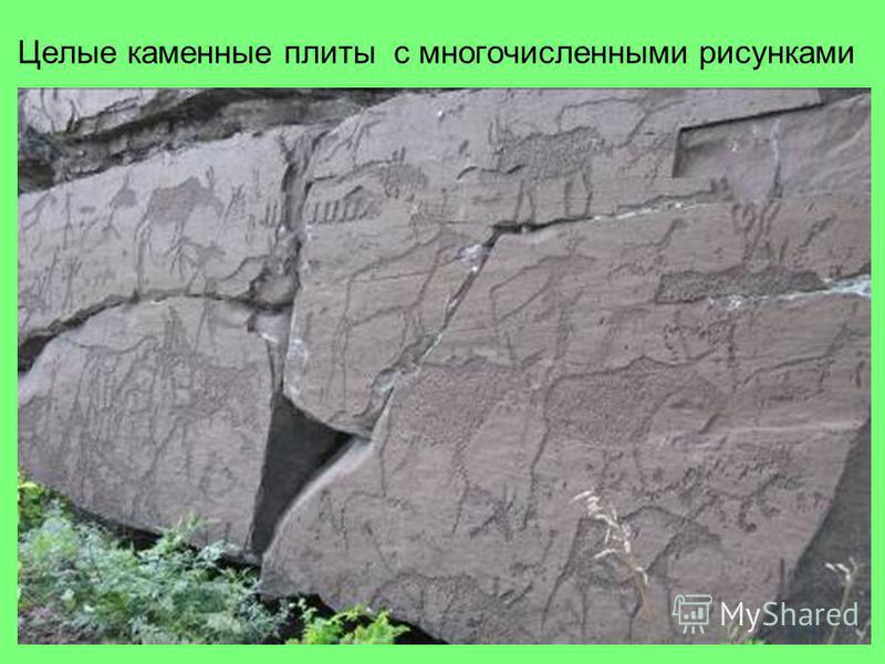 Целые каменные плиты с многочисленными рисунками