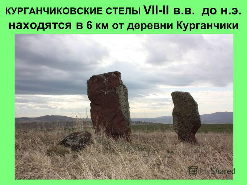 КУРГАНЧИКОВСКИЕ СТЕЛЫ VII-II в.в. до н.э. находятся в 6 км от деревни Курганчики