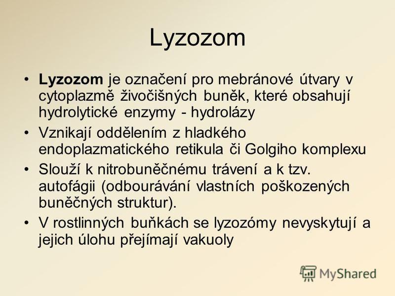 Lyzozom Lyzozom je označení pro mebránové útvary v cytoplazmě živočišných buněk, které obsahují hydrolytické enzymy - hydrolázy Vznikají oddělením z hladkého endoplazmatického retikula či Golgiho komplexu Slouží k nitrobuněčnému trávení a k tzv. auto