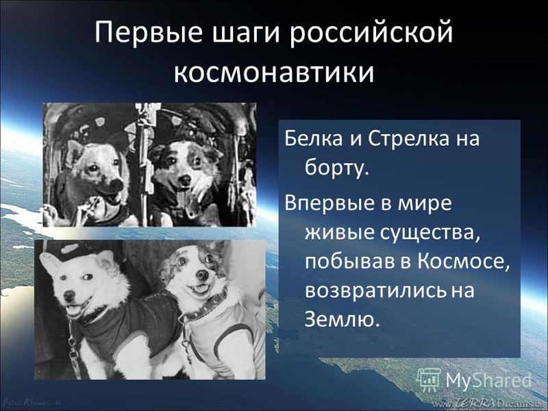 Первые шаги российской космонавтики Белка и Стрелка на борту. Впервые в мире живые существа, побывав в Космосе, возвратились на Землю.