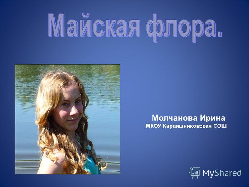 Молчанова Ирина МКОУ Караяшниковская СОШ