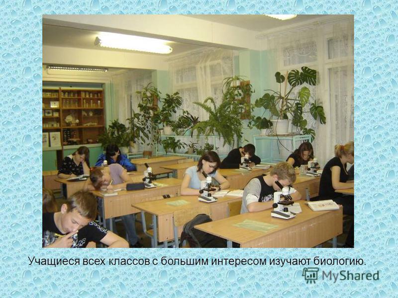 Учащиеся всех классов с большим интересом изучают биологию.