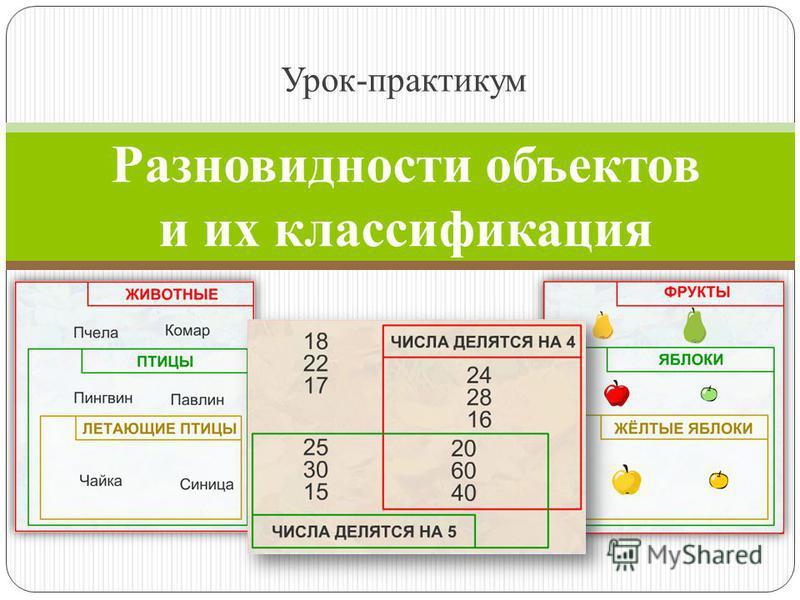 Разновидности объектов и их классификация Урок-практикум