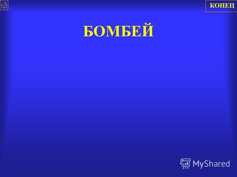 21 БАНГАЛОР КОНЕЦ