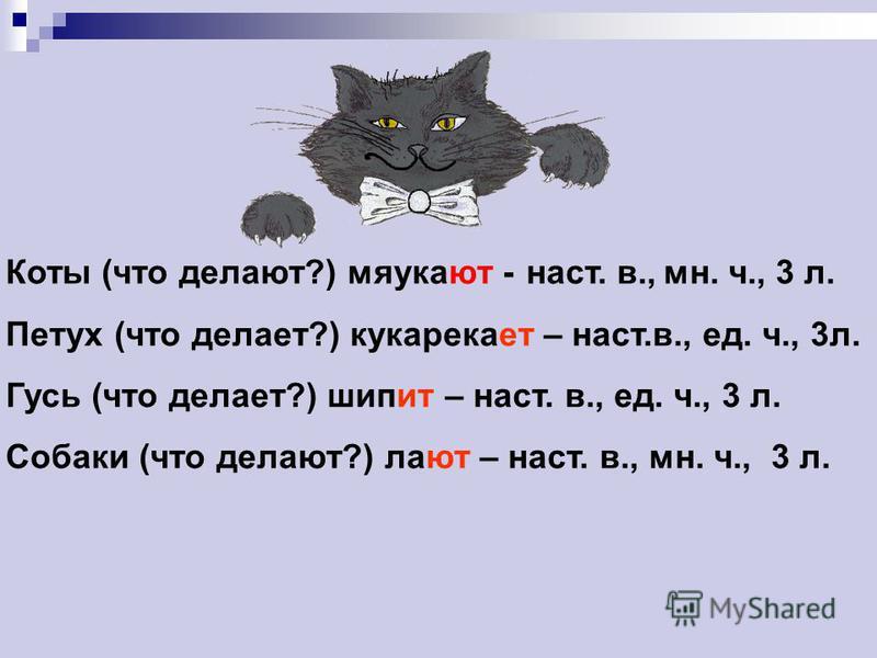 Коты (что делают?) мяука… - Петух (что делает?) кукарека… Гусь (что делает?) шип… – Собаки (что делают?) ла… – Определи время, если можно, число и лицо. Вставь и выдели окончания.