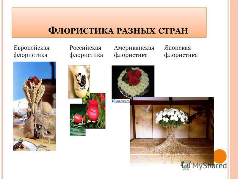 Ф ЛОРИСТИКА РАЗНЫХ СТРАН Европейская флористика Российская флористика Американская флористика Японская флористика