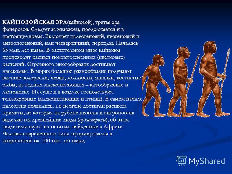 КАЙНОЗОЙСКАЯ ЭРА(кайнозой), третья эра фанерозоя. Следует за мезозоем, продолжается и в настоящее время. Включает палеогеновый, неогеновый и антропогеновый, или четвертичный, периоды. Началась 65 млн. лет назад. В растительном мире кайнозоя происходи