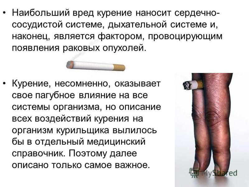 Наибольший вред курение наносит сердечно- сосудистой системе, дыхательной системе и, наконец, является фактором, провоцирующим появления раковых опухолей. Курение, несомненно, оказывает свое пагубное влияние на все системы организма, но описание всех