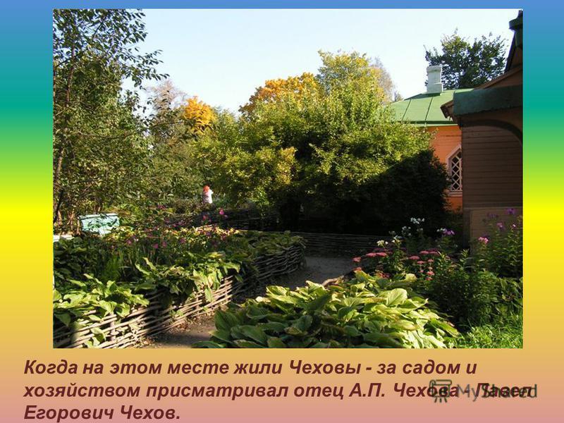 Когда на этом месте жили Чеховы - за садом и хозяйством присматривал отец А.П. Чехова - Павел Егорович Чехов.