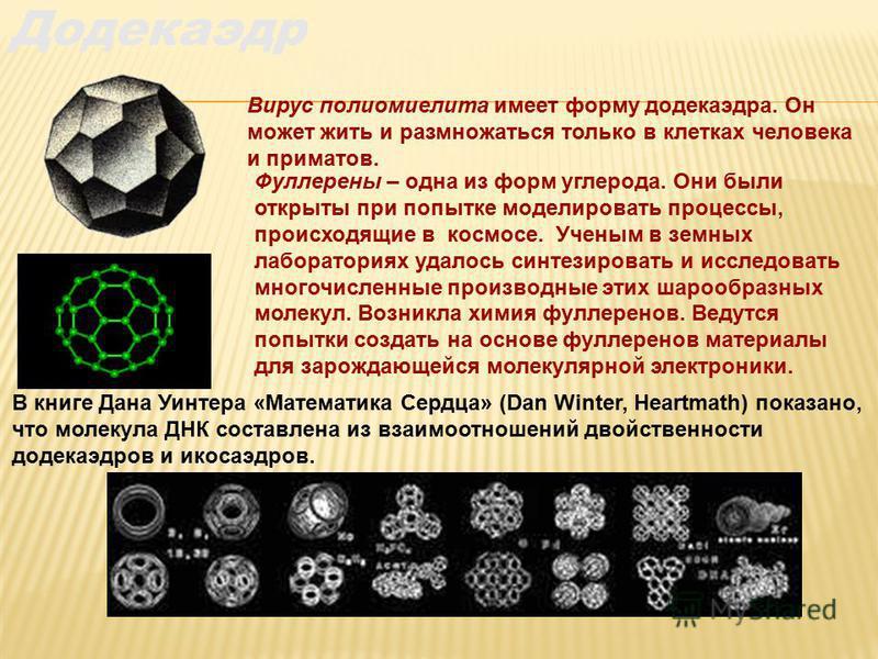 Вирус полиомиелита имеет форму додекаэдра. Он может жить и размножаться только в клетках человека и приматов. В книге Дана Уинтера «Математика Сердца» (Dan Winter, Heartmath) показано, что молекула ДНК составлена из взаимоотношений двойственности дод
