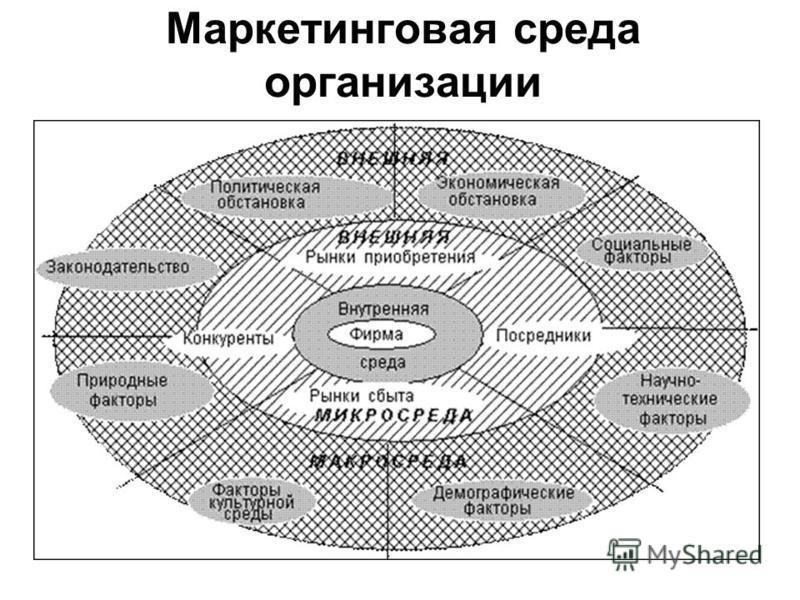 Маркетинговая среда организации