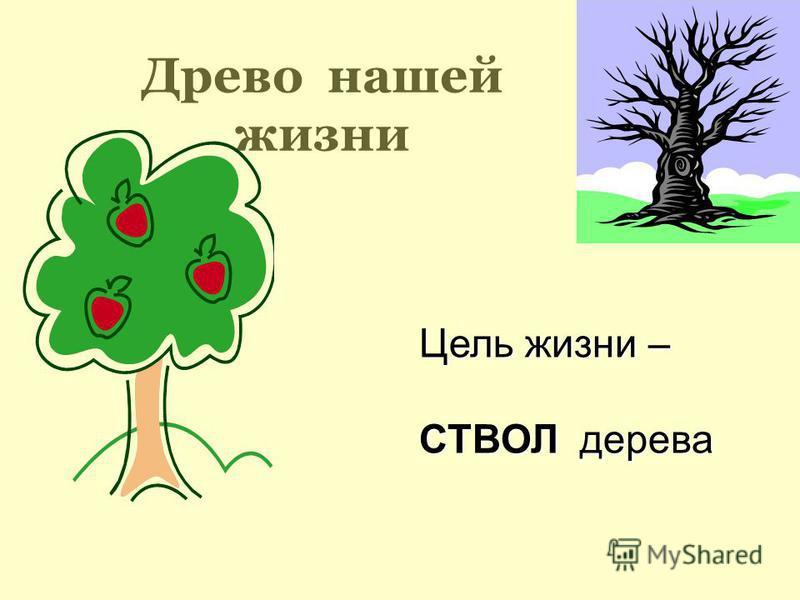 Древо нашей жизни Цель жизни – СТВОЛ дерева