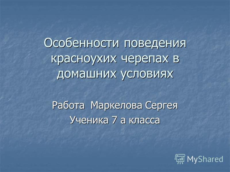 Особенности поведения красноухих черепах в домашних условиях Работа Маркелова Сергея Ученика 7 а класса