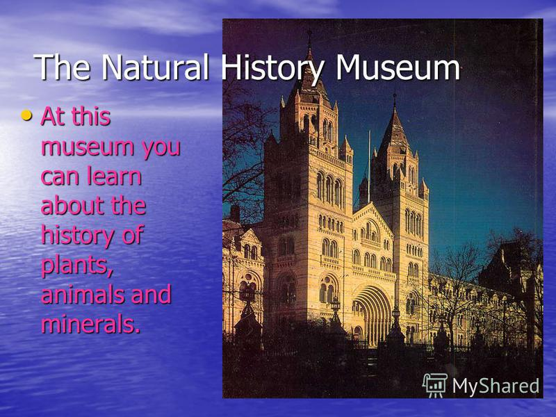 The Natural History Museum At this museum you can learn about the history of plants, animals and minerals. At this museum you can learn about the history of plants, animals and minerals.
