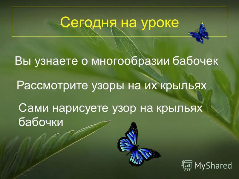 Сегодня на уроке Вы узнаете о многообразии бабочек Рассмотрите узоры на их крыльях Сами нарисуете узор на крыльях бабочки
