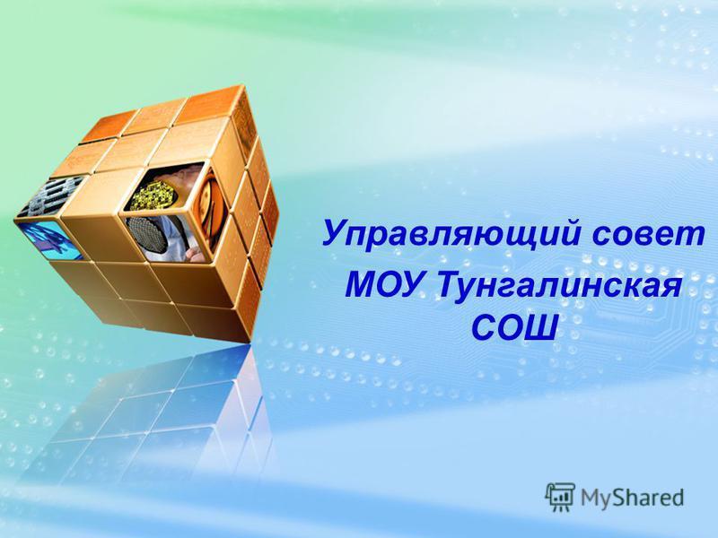 Управляющий совет МОУ Тунгалинская СОШ