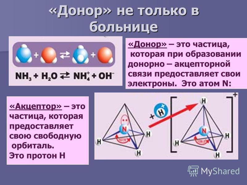 «Донор» не только в больнице «Донор» – это частица, которая при образовании донорно – акцепторной связи предоставляет свои электроны. Это атом N: «Акцептор» – это частица, которая предоставляет свою свободную орбиталь. Это протон Н