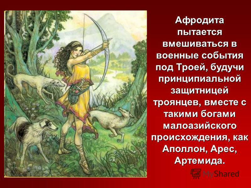 Афродита пытается вмешиваться в военные события под Троей, будучи принципиальной защитницей троянцев, вместе с такими богами малоазийского происхождения, как Аполлон, Арес, Артемида.