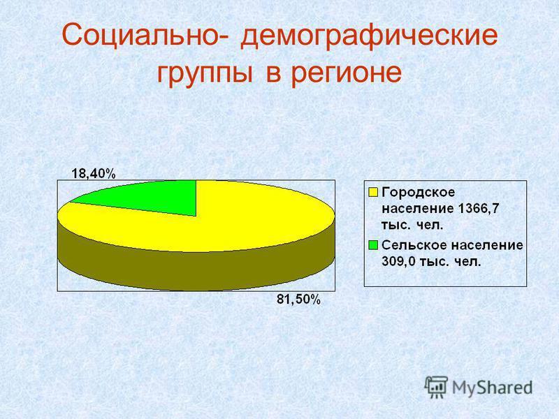 Социально- демографические группы в регионе