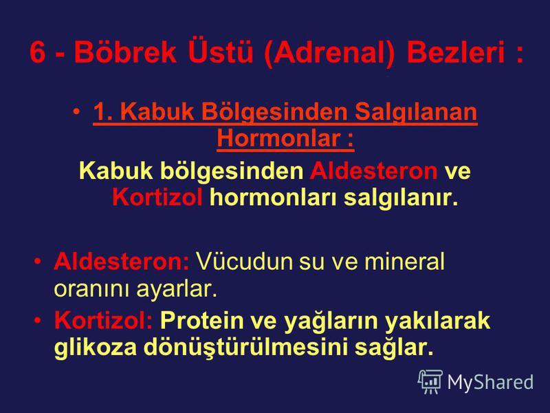 6 - Böbrek Üstü (Adrenal) Bezleri : 1. Kabuk Bölgesinden Salgılanan Hormonlar : Kabuk bölgesinden Aldesteron ve Kortizol hormonları salgılanır. Aldesteron: Vücudun su ve mineral oranını ayarlar. Kortizol: Protein ve yağların yakılarak glikoza dönüştü