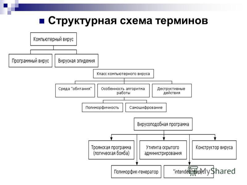Структурная схема терминов