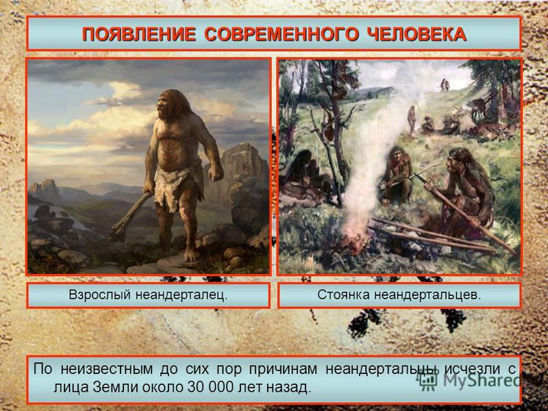 ПОЯВЛЕНИЕ СОВРЕМЕННОГО ЧЕЛОВЕКА По неизвестным до сих пор причинам неандертальцы исчезли с лица Земли около 30 000 лет назад. Взрослый неандерталец.Стоянка неандертальцев.