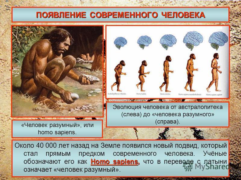 ПОЯВЛЕНИЕ СОВРЕМЕННОГО ЧЕЛОВЕКА Homo sapiens, Около 40 000 лет назад на Земле появился новый подвид, который стал прямым предком современного человека. Учёные обозначают его как Homo sapiens, что в переводе с латыни означает «человек разумный». «Чело