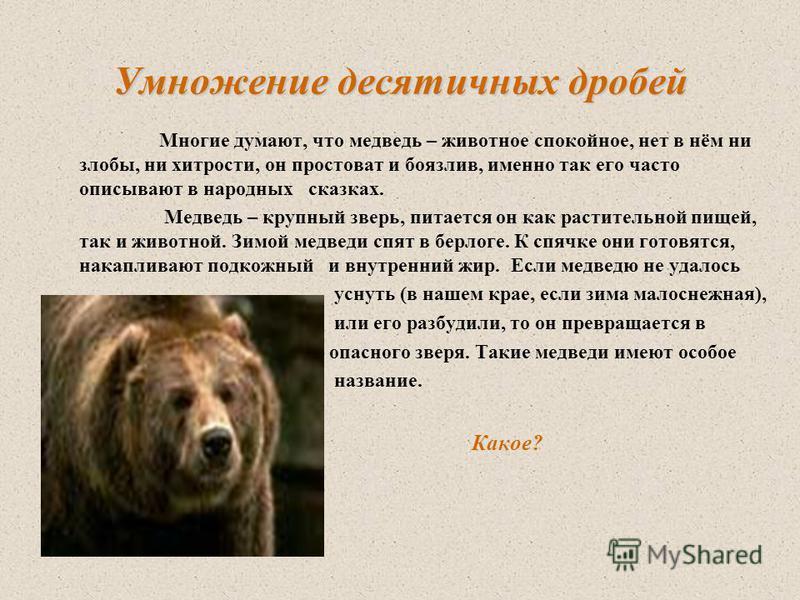 Умножение десятичных дробей Многие думают, что медведь – животное спокойное, нет в нём ни злобы, ни хитрости, он простоват и боязлив, именно так его часто описывают в народных сказках. Медведь – крупный зверь, питается он как растительной пищей, так