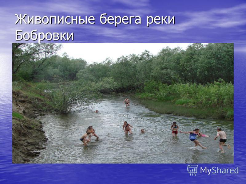 Живописные берега реки Бобровки