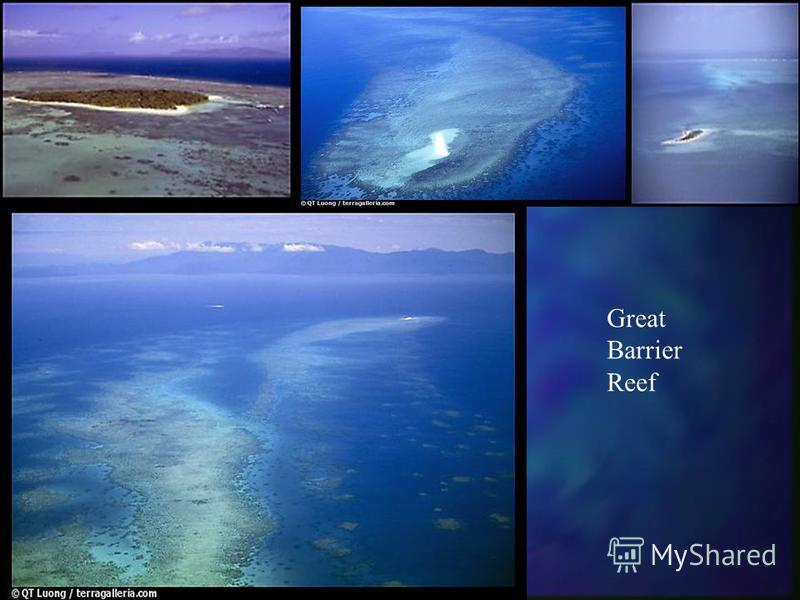 Great Barrier Reef II More and more people from all over the world visit Australia every year. The reef is one of the foremost reasons for Australian tourism. This plays a major role in the shaping of Australias economy and urbanization to the coasta
