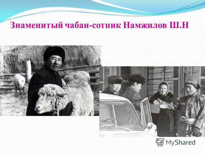 Знаменитый чабан-сотник Намжилов Ш.Н