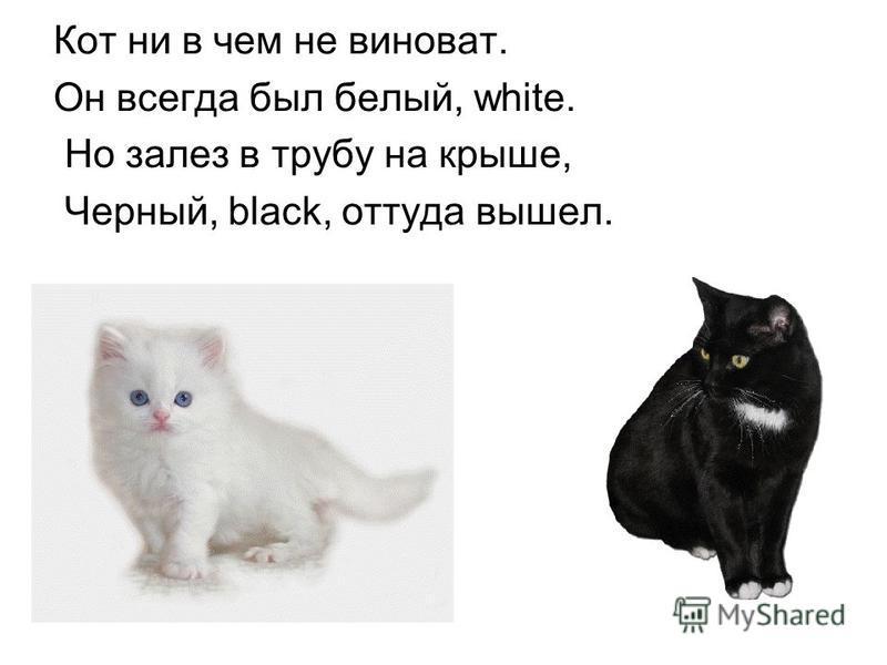 Кот ни в чем не виноват. Он всегда был белый, white. Но залез в трубу на крыше, Черный, black, оттуда вышел.
