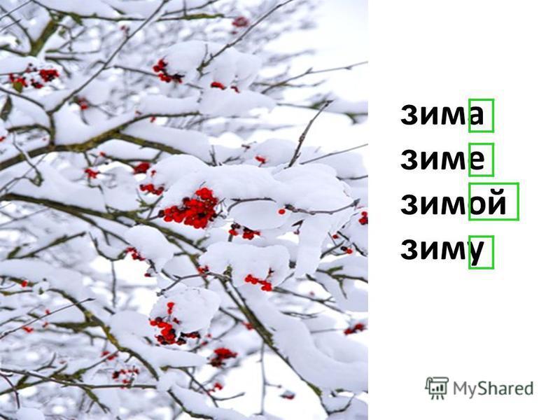 зима зиме зимой зиму
